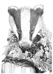 Badger 'Head'