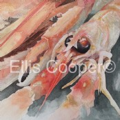 Langoustines - Original Watercolour